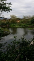 Lago nella savana