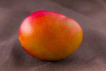 Mango fruit isolated on brown background