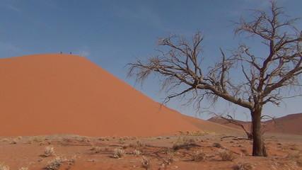 desert - Duna 45