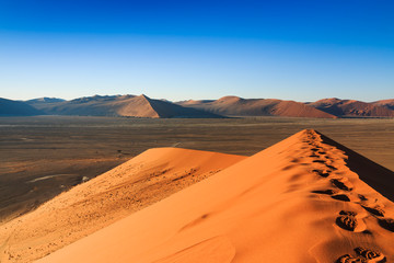 Reaching top red sanddune Sossusvlei