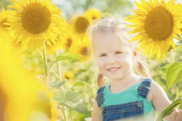 Beautiful girl plays with the sunflowers