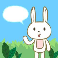 rabbit talk