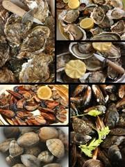 Huîtres Moules Palourdes  - Coquillages Crustacés