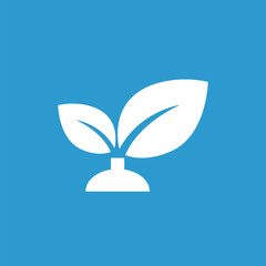 plant icon, white on the blue background .