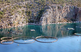Aquaculture in Greece poster