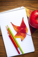autumn leaves and schools