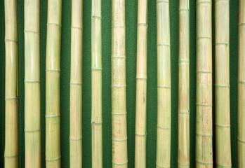 Bambus als Wanddekoration
