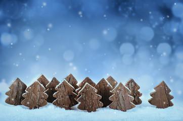 Weihnachtliche Winterzeit