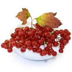 berries in a vase