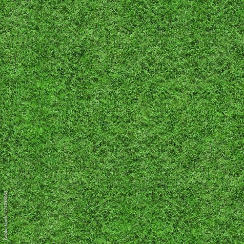 Grass Texture - Seamless poster