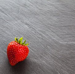 Red strawberry on slate background with copy space, square.