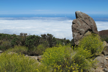Teneriffa - Teide Nationalpark