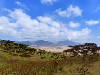 Landschaft Bomas Serengetti Ngorongoro Krater Tansania Afrika