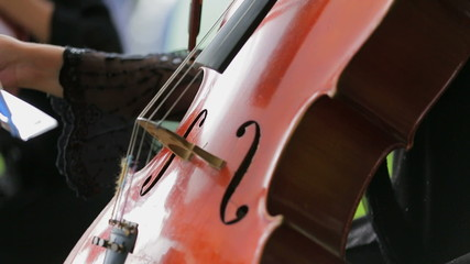 Violonist Ends Playing the Cello