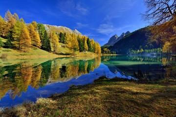 Herbstfarbene Lärchen spiegeln sich im Palpuognasee