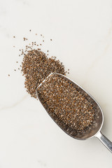 Chia seeds on a scoop