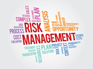 Risk Management vector word collage, colorful text composition