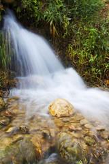 agua fuente de vida