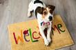 Leinwanddruck Bild - Cute dog posing on the carpet