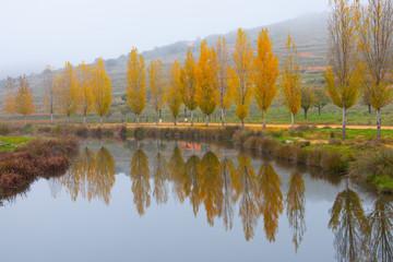Reflejos naturaleza otoño