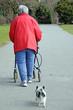 Was passiert mit Haustier im Pflegefall