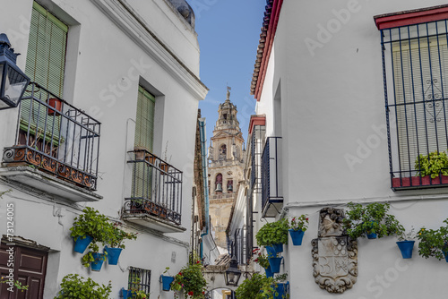 canvas print picture Calleja de las Flores in Cordoba, Andalusia, Spain.