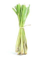 bundle of lemon grass isolated on white