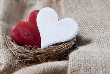 coeurs de saint Valentin protégés dans un nid
