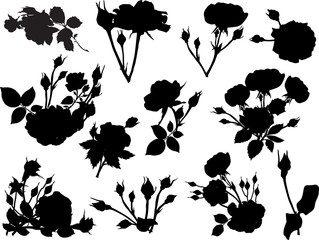 twelve rose black isolated silhouettes