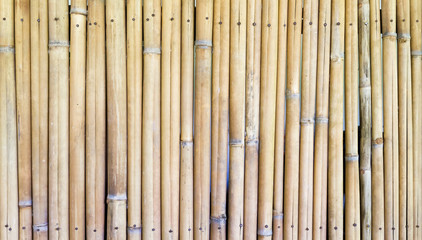 Old bamboo wall.