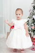 Little girl in a white dress  stand near a Christmas fir-tree