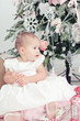 Little girl in a white dress  sits  near a Christmas fir-tree