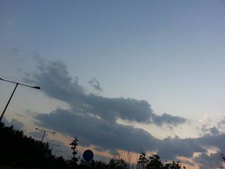 악어구름crocodile