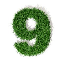 9 nove numero 3d erba verde, isolato su sfondo bianco