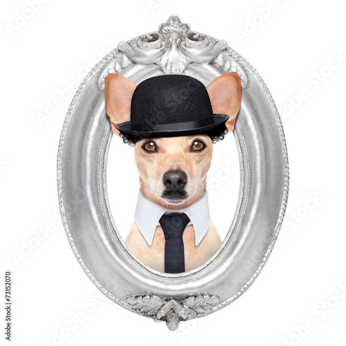 Poster dog in a frame