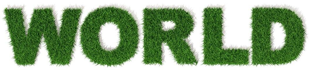 World Mondo erba verde, parola isolata su sfondo bianco