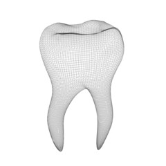tooth mesh model