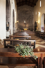 "Olivenzweig in der ""Chiesa Maggiore"" in Assisi"