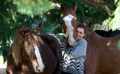 Cavallo affettuoso 05