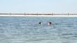 Man swimming .