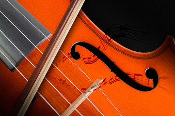 Violino - Violin with musical notes