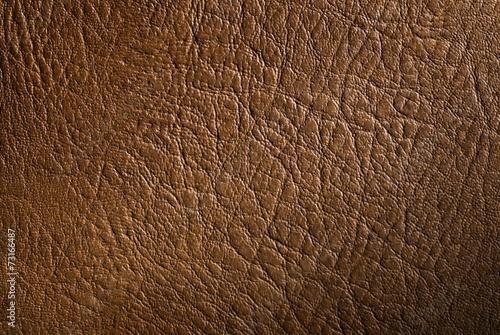 obraz lub plakat prawdziwa skóra bydlęca tekstury