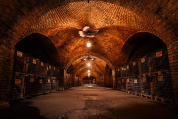 beverage storage cellar
