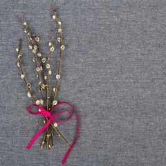 catkins bouquet on gray textile background