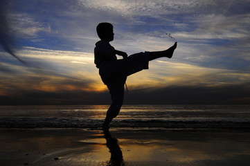 Silhouette karate fighter