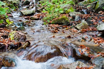 Autumn landscape with creek, rocks and foliage in mountain