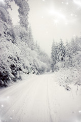 Christmas background with snowy road in the forest