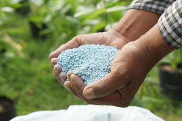hands holding artificial fertilizer