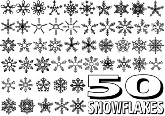 Snowflake Set - 50 Illustrations
