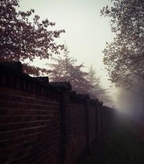 friedhofsmauer im nebel
